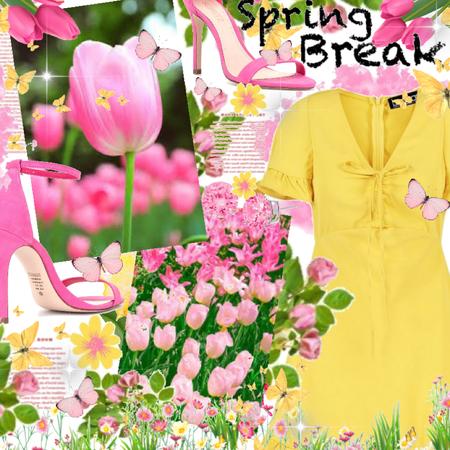 Spring Break! 🌸🌼🌷🍃