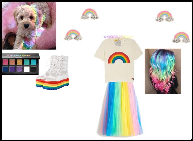 for dog contest rainbowww