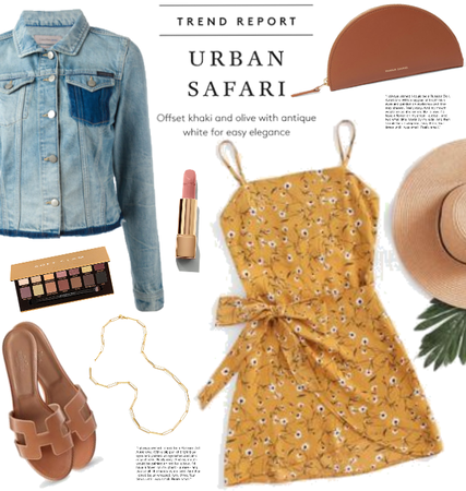 Urban Safari!