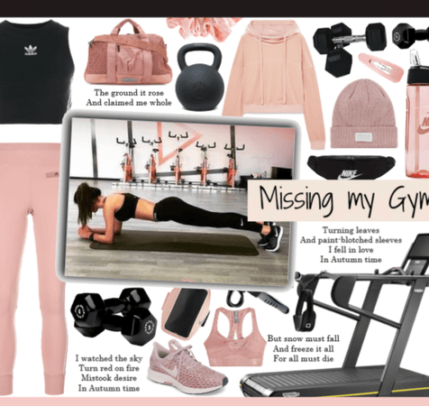 Missing my Gym