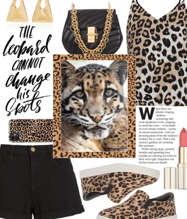 Animal Print - Leopard 2021