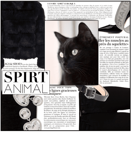 Fashion File: Critter Couture 'House Cat' - Contest