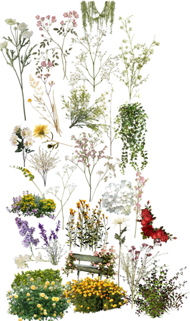 Flowers  pt.1