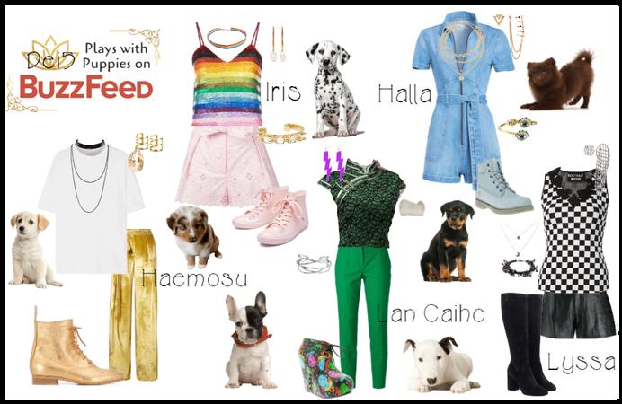 Dei5 | Buzzfeed Puppies