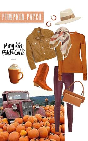 Pumpkin Patch Cutie