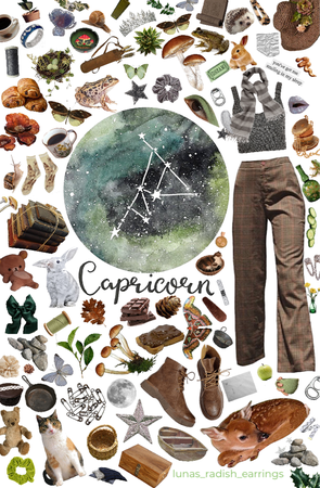 capricorn 🌱⛅️🍄