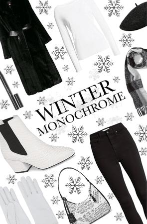 Winter Monochrome