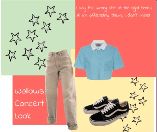 Wallows Concert Look Inspo #2