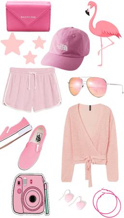 Pink Flamingo🦩