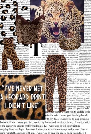 all cheetah prints