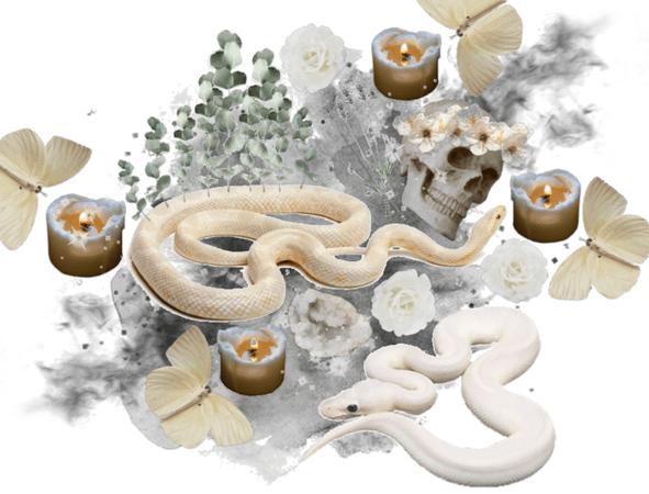 Nature's chaos ritual