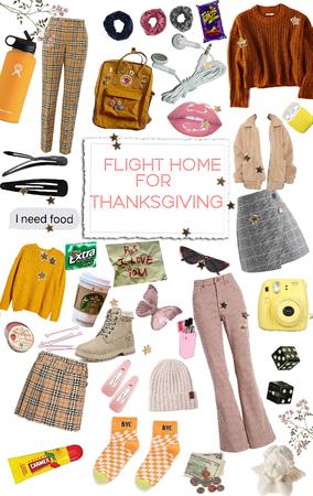 flight home for thanksgiving
