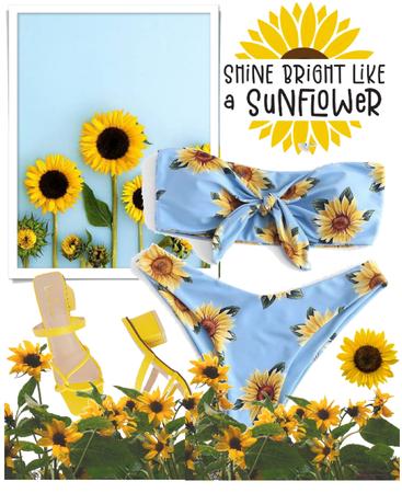Sunflower!🌻