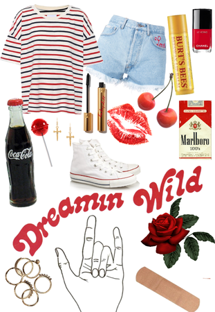 dreamin wild
