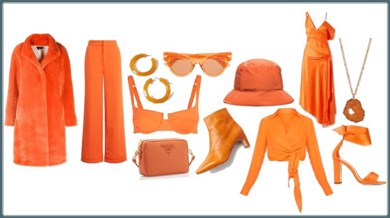 Portal Orange