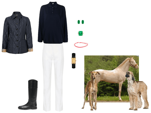 Equestrian Morning