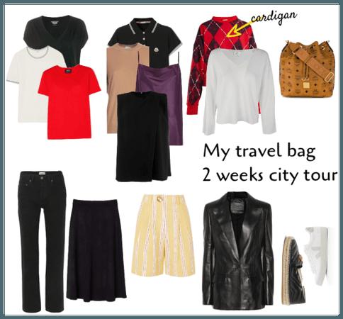 My travel bag capsule