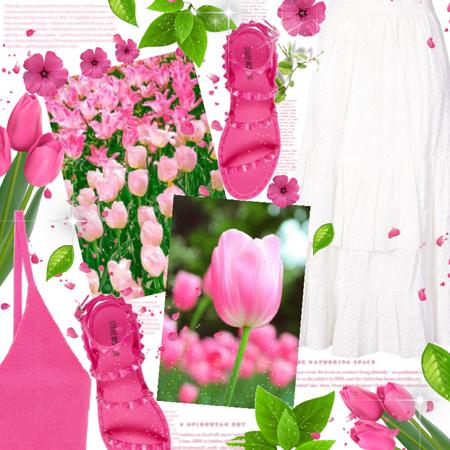 Flower Field   Spring is here