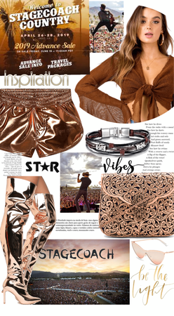 Rose Gold Stagecoach