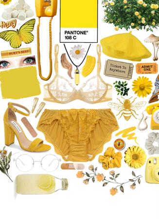 honey nights