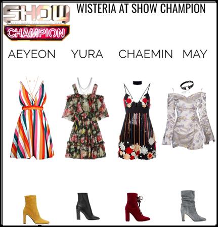 WISTERIA SHOW CHAMPION