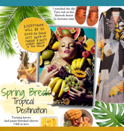 Spring Break Tropical Destination