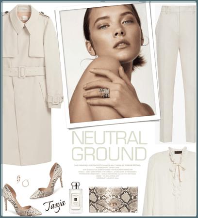 Neutral Ground/Spring