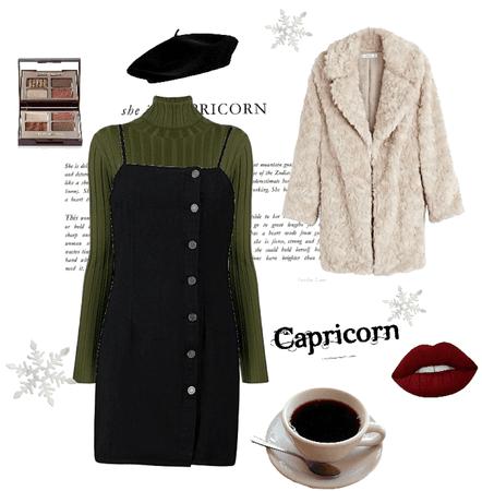 Capricorn Winter