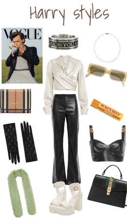 Harry styles outfit