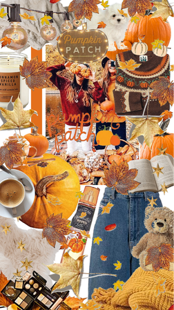 cozy fall pumpkin patch