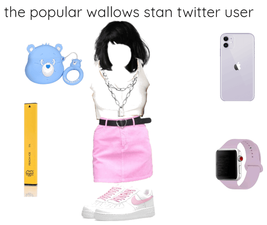 the popular wallows stan twitter use