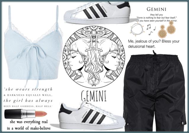 Gemini : the twins