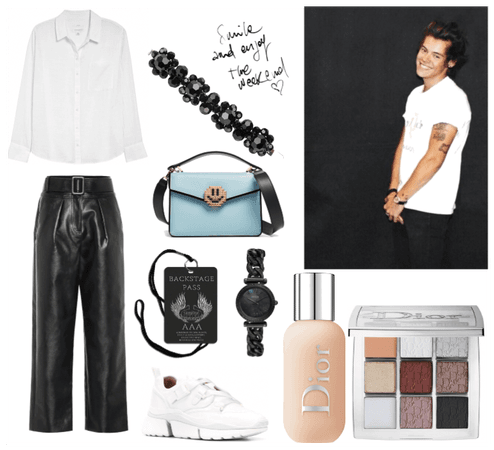 Backstage W/ Harry