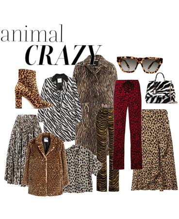 animal crazy