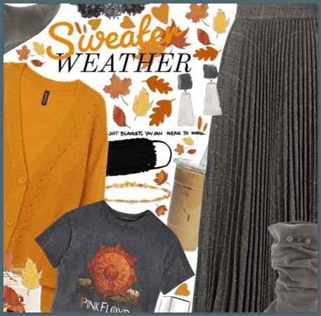 Sweater wetaher