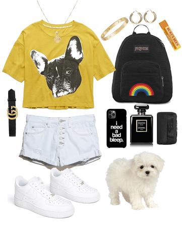 walk the pup,