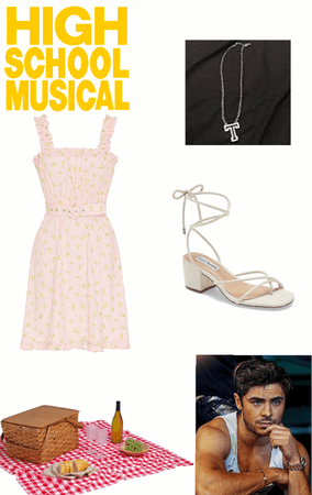 high school musical Gabriella picnic Date