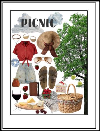 Go Outside: Solo Picnic
