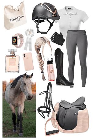 rich equestrian girl