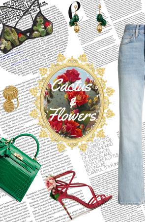 Cactus & Flowers
