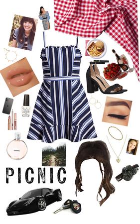 picnic luxury