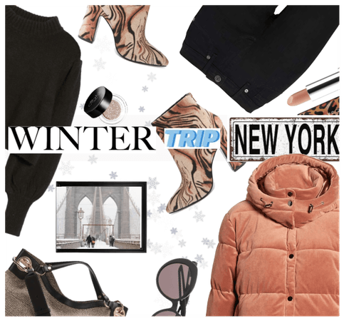 Winter Trip to New York