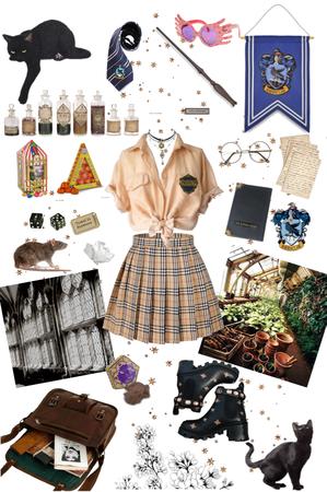harry Potter 🌙