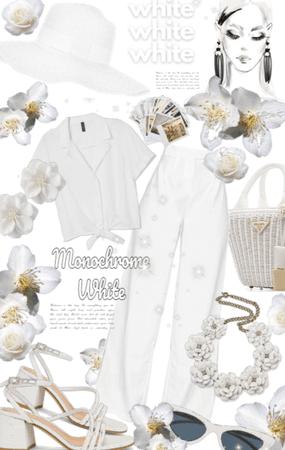 Monochrome white