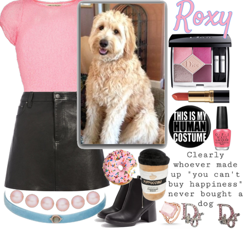 Roxy ~ Goldendoodle