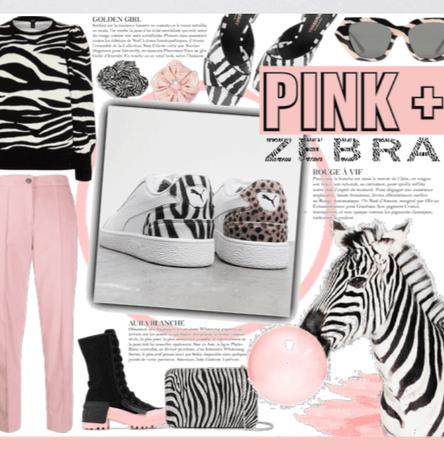 Pink + Zebra