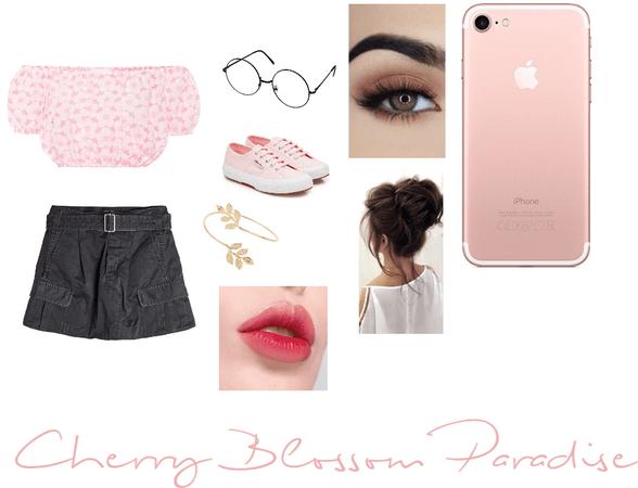Cherry Blossom paradise