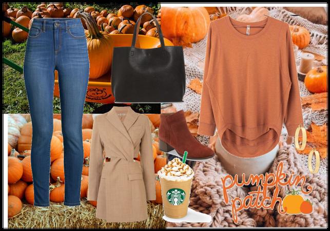 Love For Pumpkin