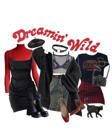 dreamin' wild