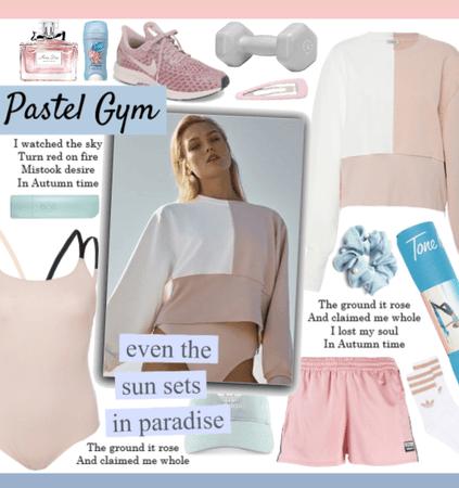 Pastel Gym
